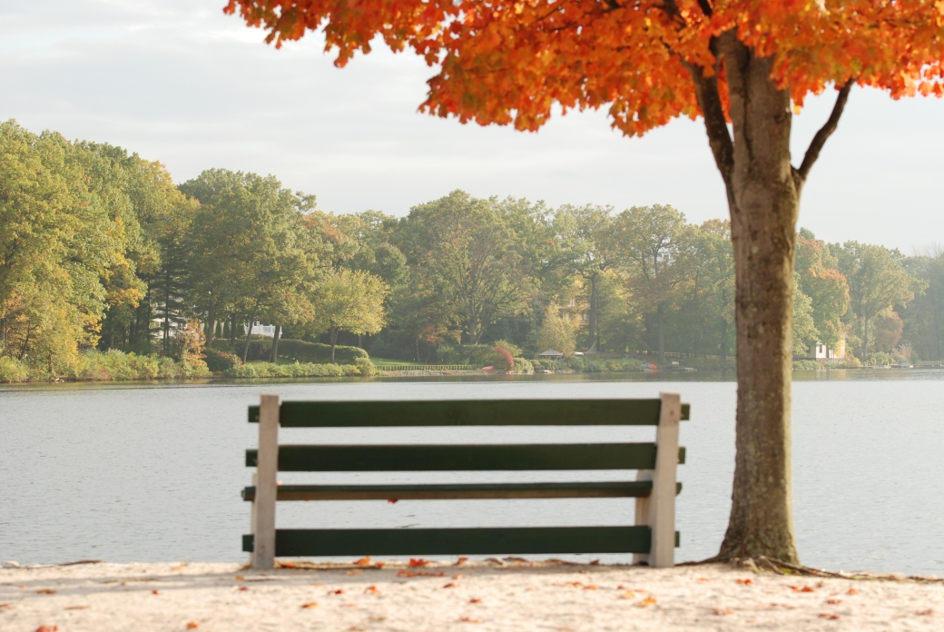 bench overlooking lake